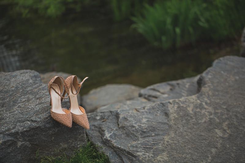 Central Park Wedding - Maria & Denisse-3