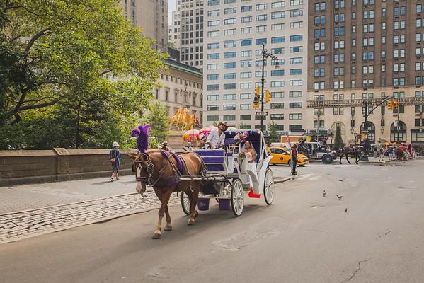 Central Park Wedding - Maya & Samanta (9)