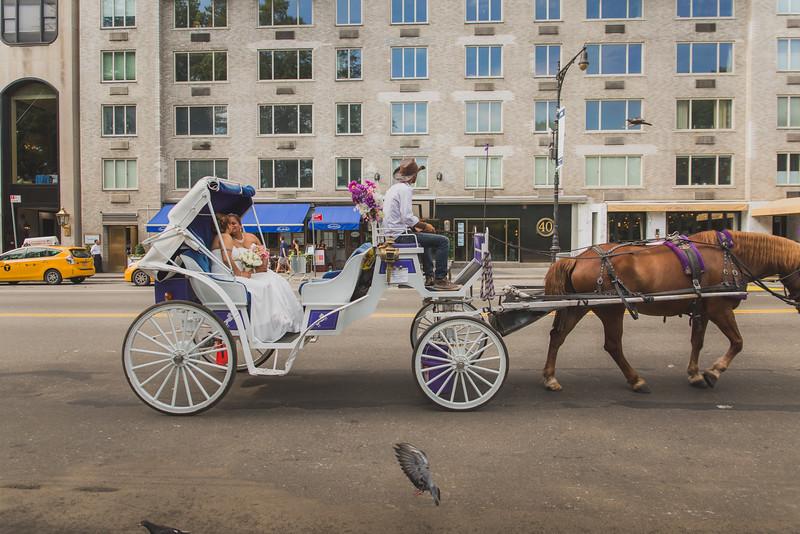 Central Park Wedding - Maya & Samanta (15)