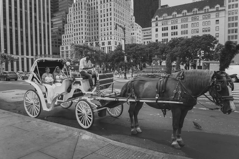Central Park Wedding - Maya & Samanta (6)