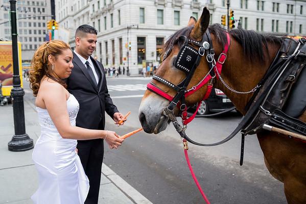 Central Park Wedding - Danny & Nidia-22