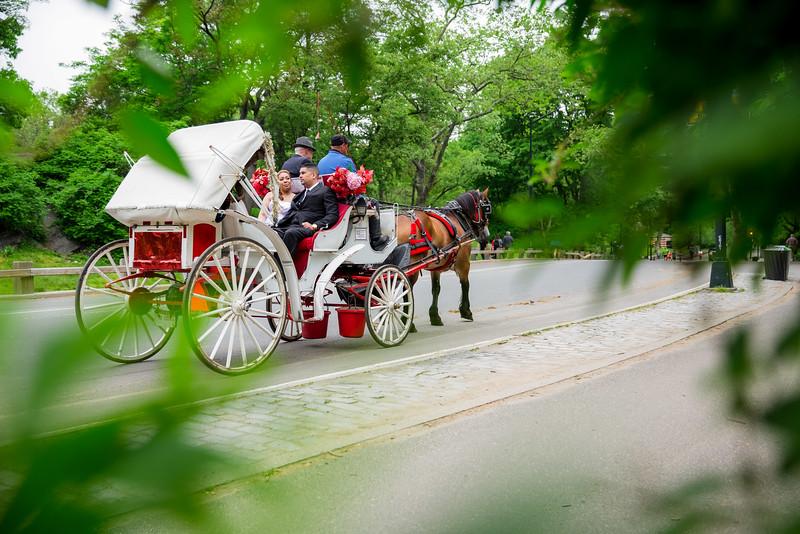 Central Park Wedding - Danny & Nidia-14