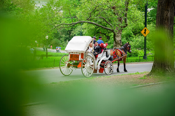 Central Park Wedding - Danny & Nidia-11