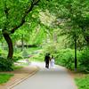 Central Park Wedding - Danny & Nidia-153