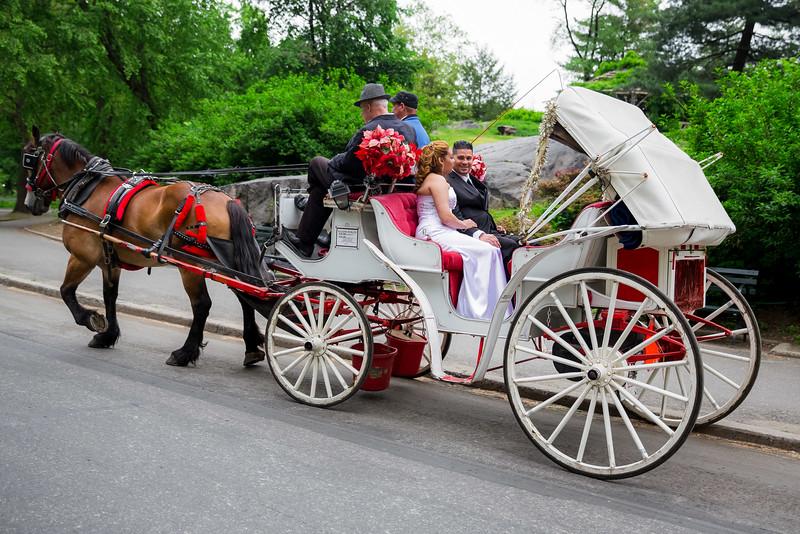 Central Park Wedding - Danny & Nidia-9