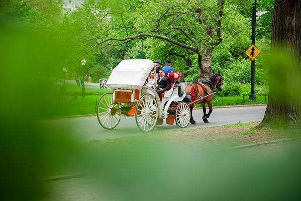 Central Park Wedding - Danny & Nidia-10