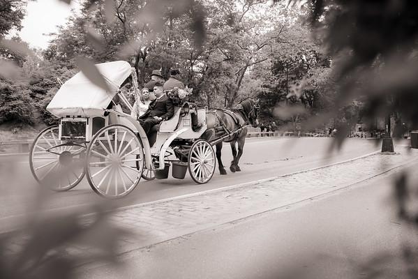 Central Park Wedding - Danny & Nidia-13