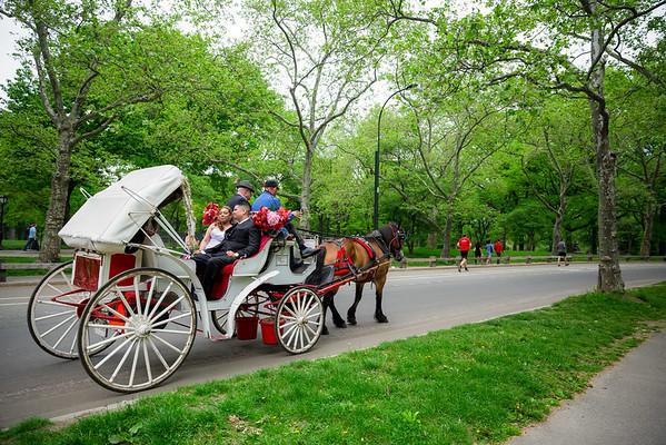 Central Park Wedding - Danny & Nidia-16