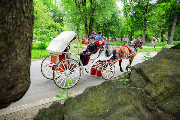 Central Park Wedding - Danny & Nidia-12