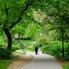 Central Park Wedding - Danny & Nidia-154