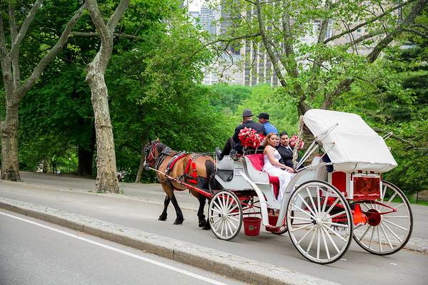Central Park Wedding - Danny & Nidia-21