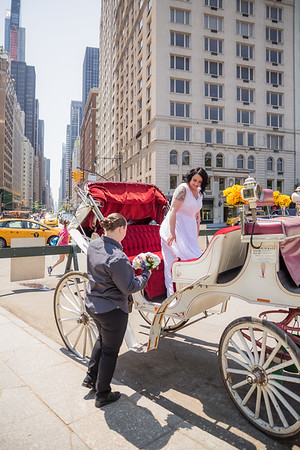 Central Park Wedding - Priscilla & Demmi-7