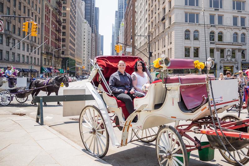 Central Park Wedding - Priscilla & Demmi-9
