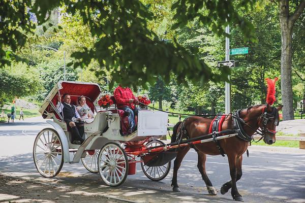 Central Park Wedding - Rhys and Lindsay-15