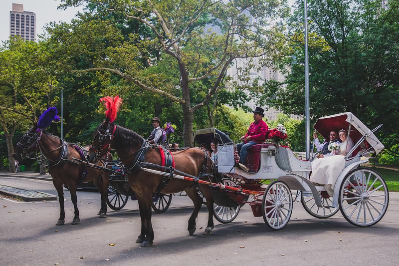 Central Park Wedding - Rhys and Lindsay-6