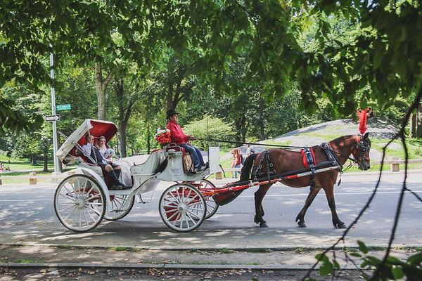 Central Park Wedding - Rhys and Lindsay-16