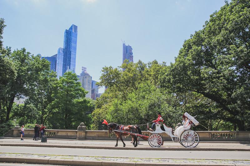 Central Park Wedding - Rhys and Lindsay-23