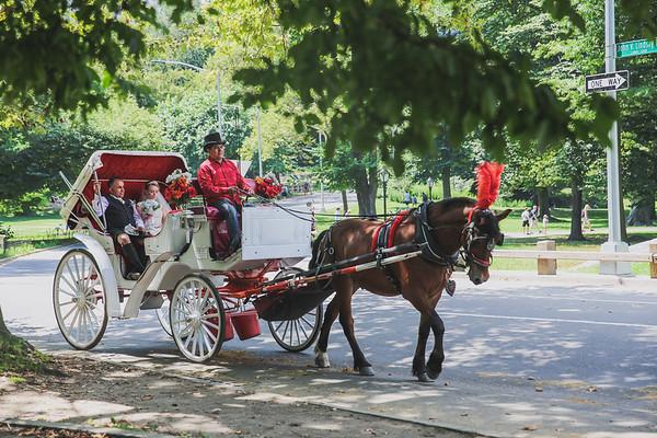 Central Park Wedding - Rhys and Lindsay-14