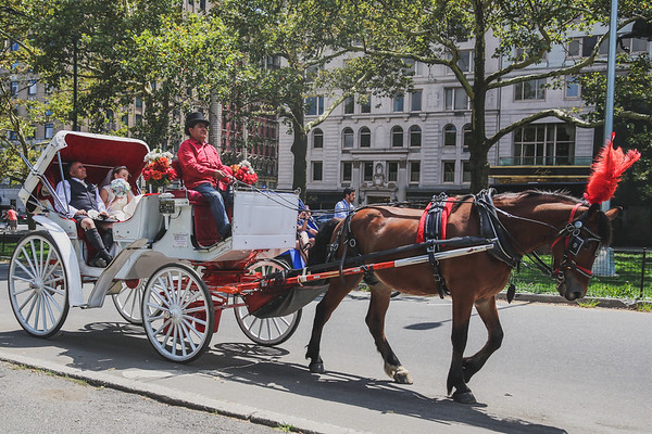 Central Park Wedding - Rhys and Lindsay-11
