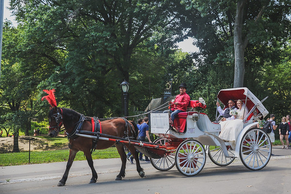 Central Park Wedding - Rhys and Lindsay-22
