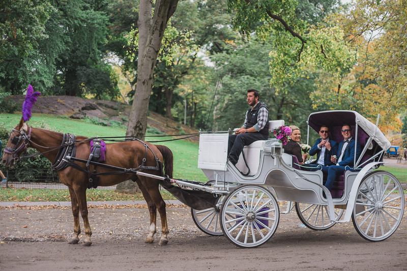 Central Park Wedding - Ricky & Shaun-3