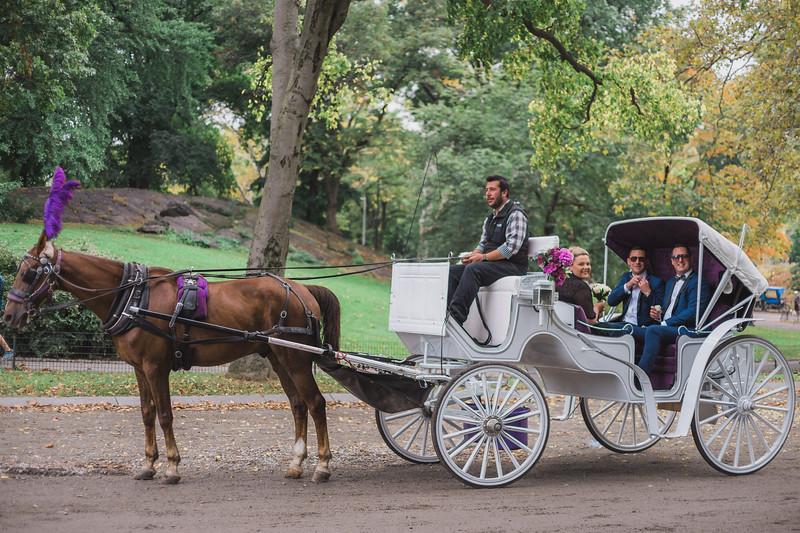 Central Park Wedding - Ricky & Shaun-3