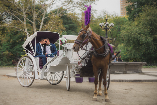 Central Park Wedding - Ricky & Shaun-13