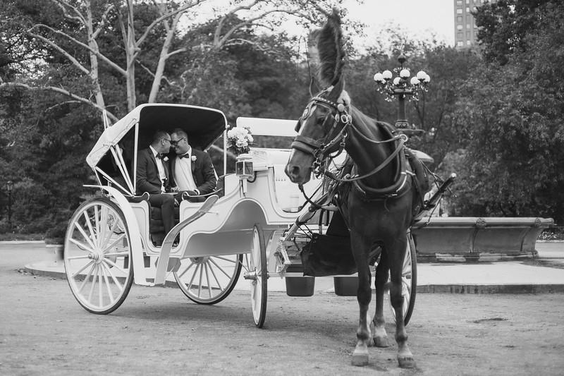 Central Park Wedding - Ricky & Shaun-14
