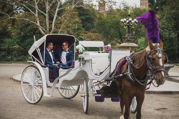 Central Park Wedding - Ricky & Shaun-11
