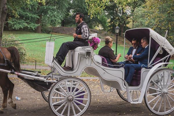 Central Park Wedding - Ricky & Shaun-1