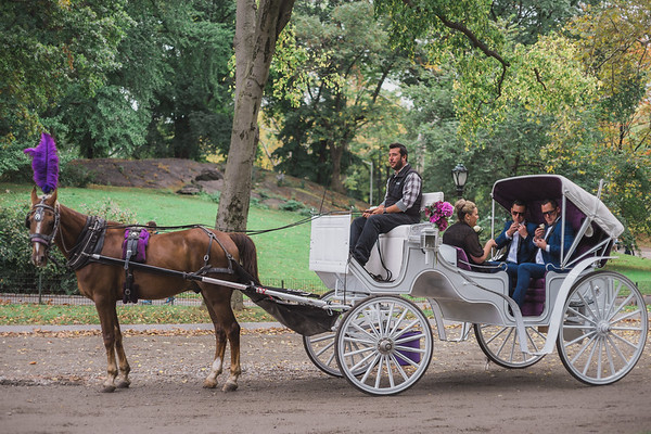 Central Park Wedding - Ricky & Shaun-2