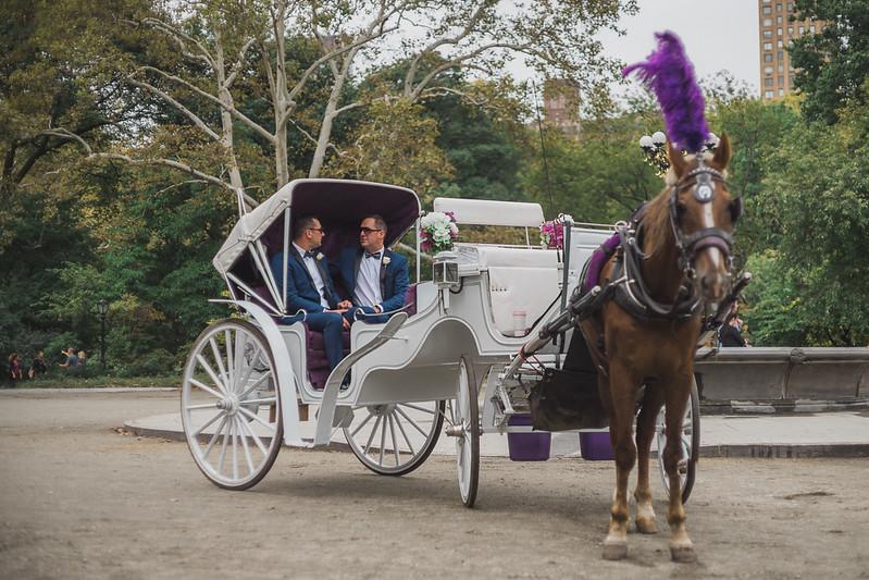 Central Park Wedding - Ricky & Shaun-12