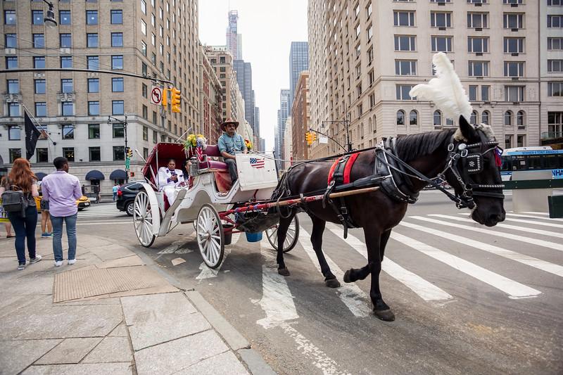 Central Park Wedding - Ronica & Hannah-8