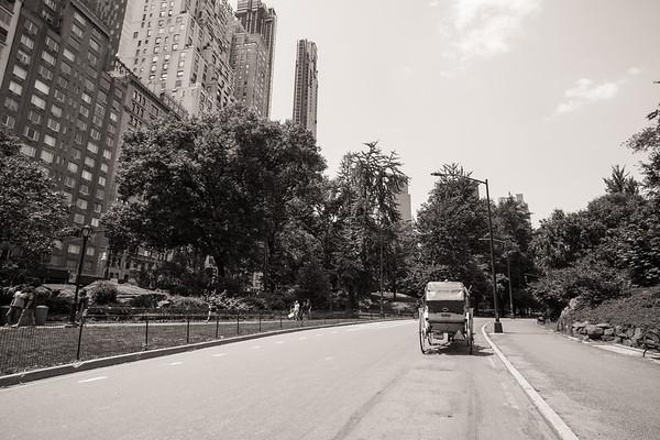 Central Park Wedding - Ronica & Hannah-14