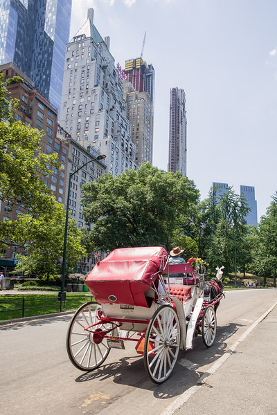 Central Park Wedding - Ronica & Hannah-12