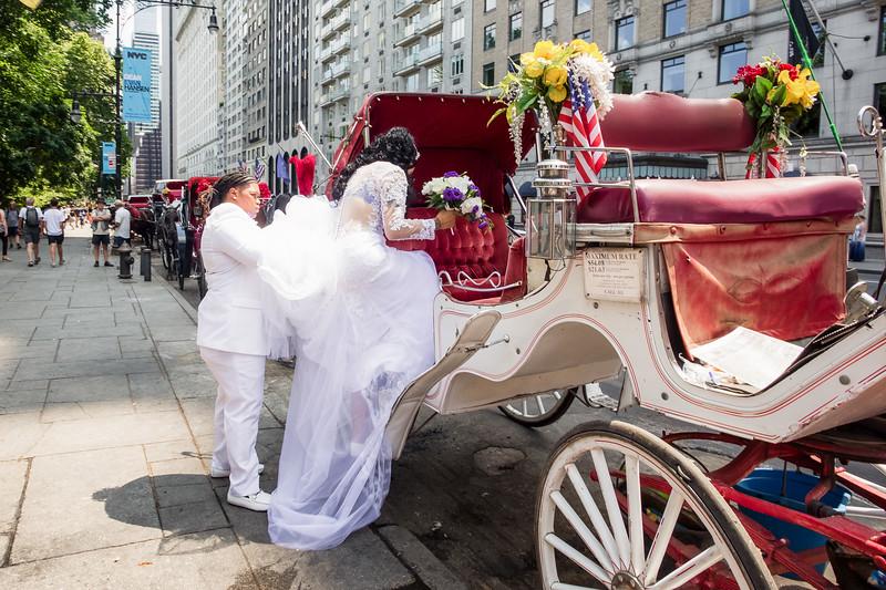 Central Park Wedding - Ronica & Hannah-1