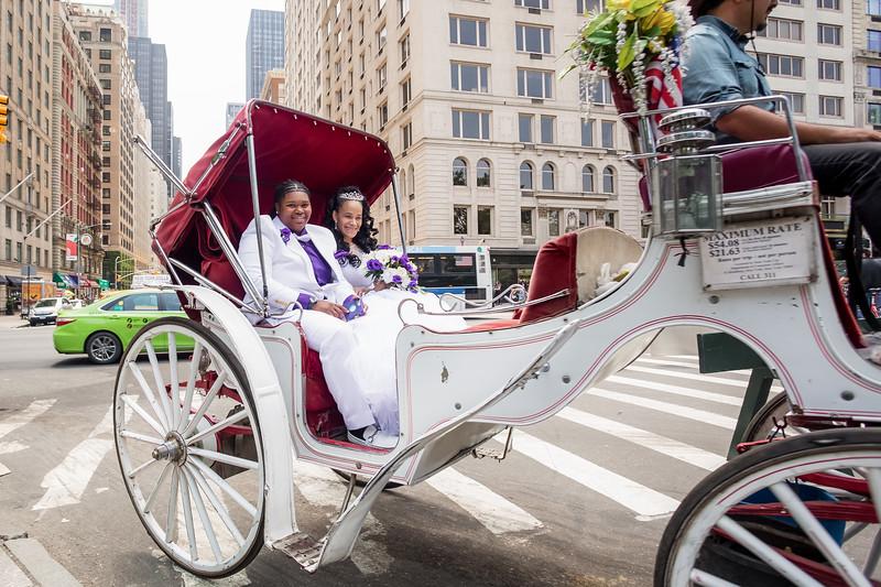 Central Park Wedding - Ronica & Hannah-10