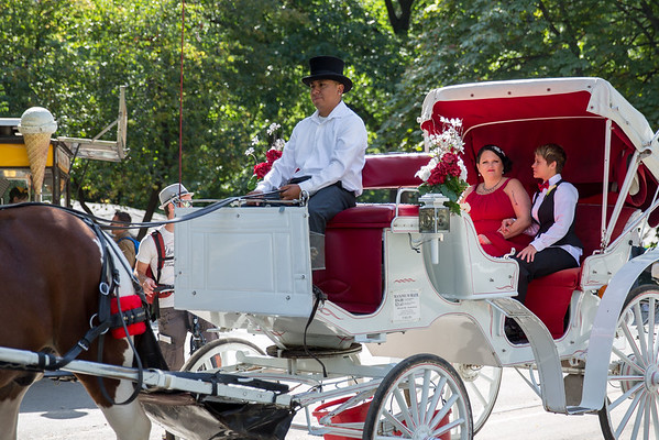 Central Park Wedding - Sandra & Brandi (8)