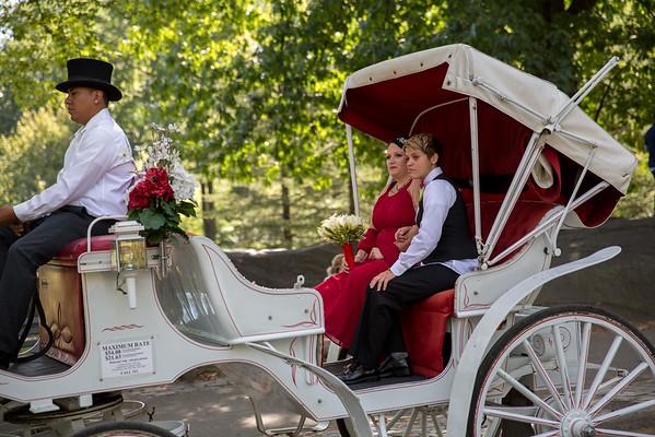Central Park Wedding - Sandra & Brandi (12)