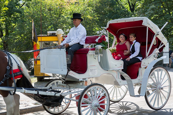 Central Park Wedding - Sandra & Brandi (9)