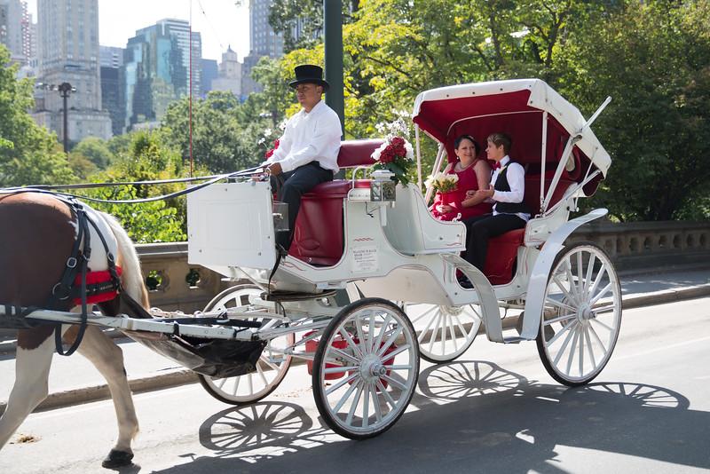 Central Park Wedding - Sandra & Brandi (15)