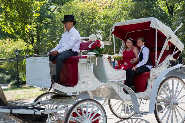 Central Park Wedding - Sandra & Brandi (10)