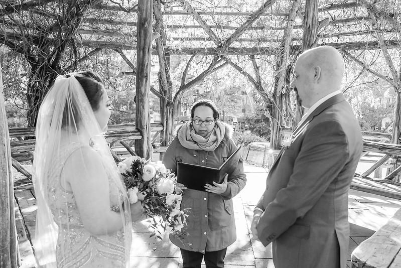 Central Park Wedding - Valerie & Justin-16