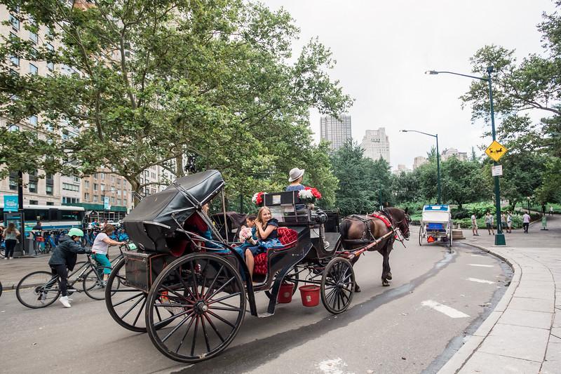 Central Park Wedding - Vincent & Ruth (18)