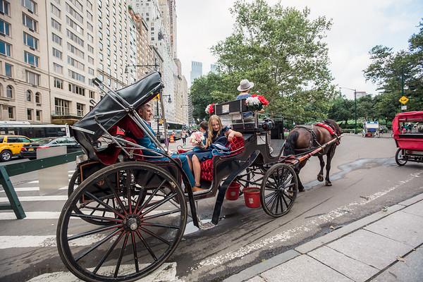 Central Park Wedding - Vincent & Ruth (17)