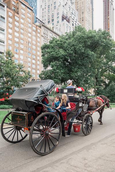 Central Park Wedding - Vincent & Ruth (25)