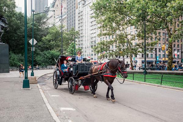 Central Park Wedding - Vincent & Ruth (21)