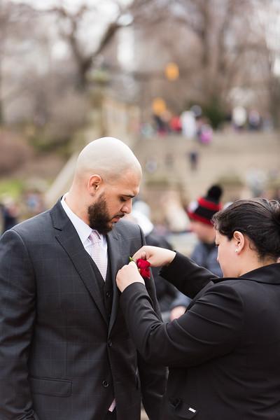 Central Park Wedding - Wil & Jason-1
