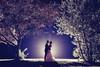 Chad & Megan's Wedding-0959