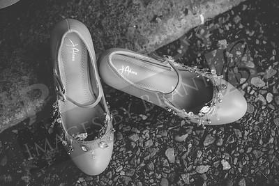 yelm_wedding_photographer_Jurpik_009_DS8_8619